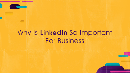 Why Is LinkedIn So Important For Business?